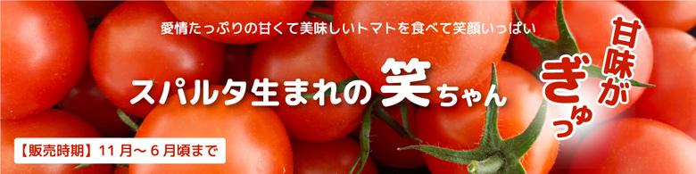 スパルタ生まれの笑ちゃんトマト
