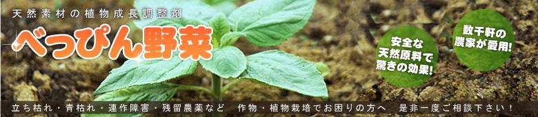 「べっぴん野菜」が作れます!立ち枯れ・青枯れ・連作障害・残留農薬など、作物、植物栽培でお困りの方へ。是非一度ご相談下さい!天然素材の植物成長調整剤『北海グリーン』