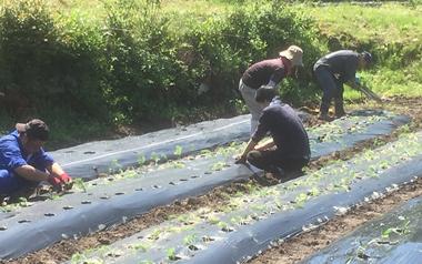 農に関わる事業